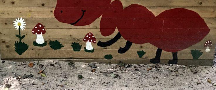 Die roten Waldameisen